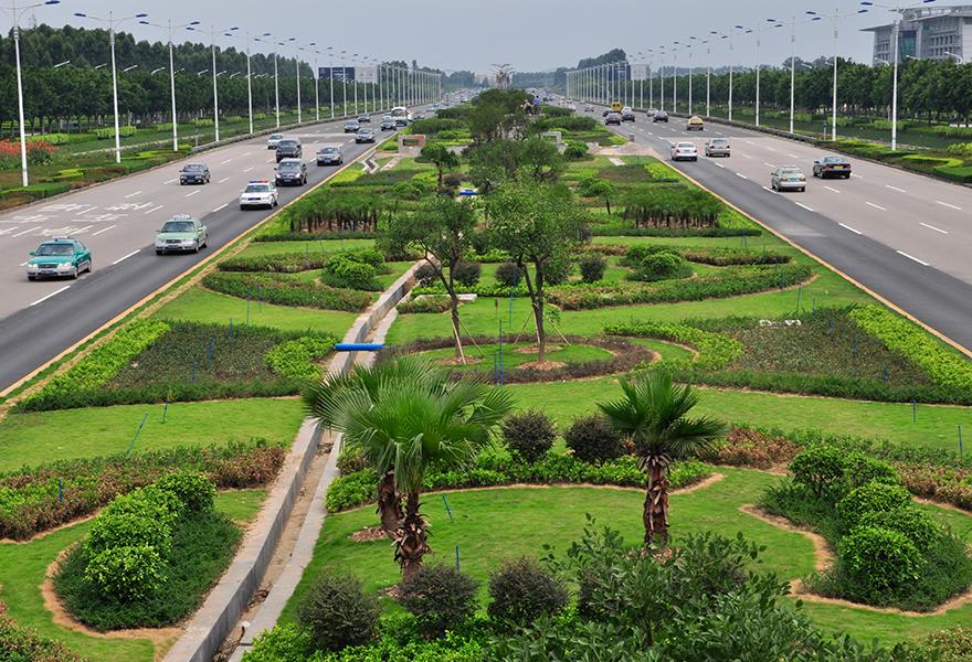 南航外景机场绿化带