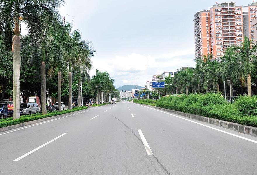 荔城大道排水及综合改造