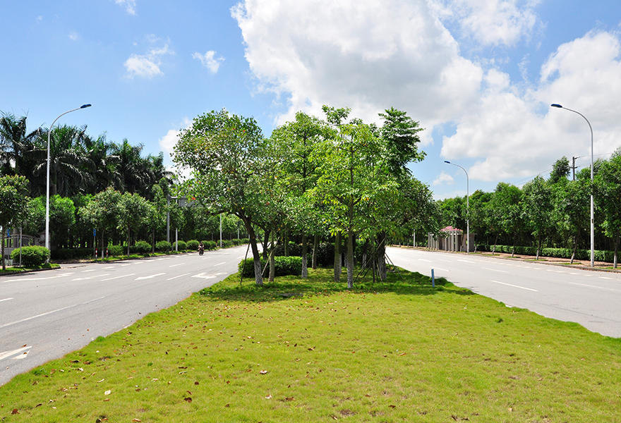 广州南沙万环西路绿化体育app万博